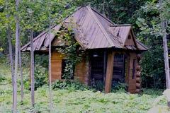 Vertido en el bosque verde imagenes de archivo