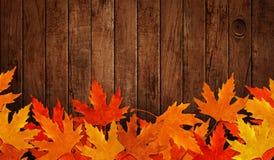 Vertido sobre las hojas secas en madera del otoño Fotos de archivo