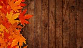 Vertido sobre las hojas secas en madera del otoño Fotografía de archivo