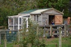 Vertiente de madera con el invernadero Foto de archivo libre de regalías