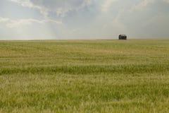 Vertiente vieja en campo de trigo Fotografía de archivo libre de regalías