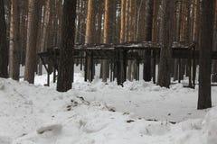 Vertientes para la barbacoa en el parque 30428 del invierno Imágenes de archivo libres de regalías