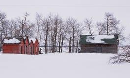 Vertientes viejas en invierno Fotografía de archivo