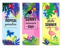 Vertikal banersamling för tropiskt paradis vektor illustrationer