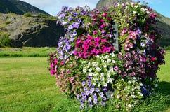Vertikal blomsterrabatt Royaltyfria Foton