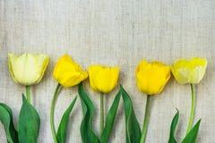 Vertikal ordning av ljus - gula tulpan på linnetygbakgrund, minimalist stil, dag för moder` s, födelsedag Royaltyfri Bild