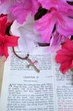 Vertikal påskbild med ljusa rosa blommor Royaltyfria Foton