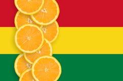 Vertikal rad för Bolivia flagga- och citrusfruktskivor arkivfoton