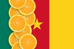 Vertikal rad för Kamerunflagga- och citrusfruktskivor arkivbild