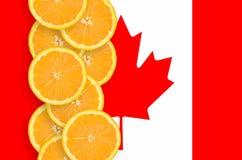 Vertikal rad för Kanada flagga- och citrusfruktskivor arkivbilder