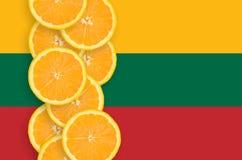 Vertikal rad för Litauen flagga- och citrusfruktskivor royaltyfri foto