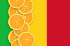 Vertikal rad för Mali flagga- och citrusfruktskivor arkivfoton
