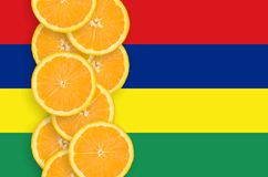 Vertikal rad för Mauritius flagga- och citrusfruktskivor arkivbild