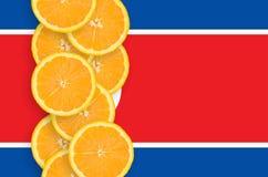 Vertikal rad för Nordkorea flagga- och citrusfruktskivor arkivbild