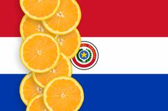 Vertikal rad för Paraguay flagga- och citrusfruktskivor royaltyfria bilder