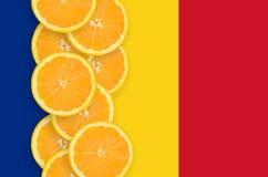 Vertikal rad för Rumänien flagga- och citrusfruktskivor arkivfoto
