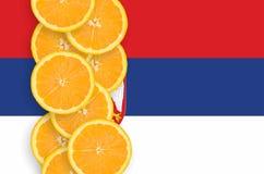 Vertikal rad för Serbien flagga- och citrusfruktskivor fotografering för bildbyråer
