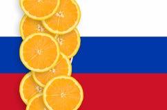 Vertikal rad för Slovakien flagga- och citrusfruktskivor royaltyfri fotografi