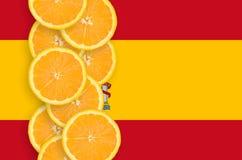 Vertikal rad för Spanien flagga- och citrusfruktskivor arkivfoton