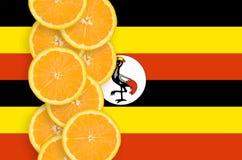 Vertikal rad för Uganda flagga- och citrusfruktskivor royaltyfri fotografi