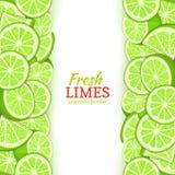 Vertikal sömlös gräns för limefruktfrukt Överkanten för vektorillustrationkortet och nedersta ny tropicat gör grön den hela citro Royaltyfri Foto