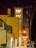 Vertikal sikt av domkyrkan av inkarnationen--Nashville Tennessee Royaltyfria Foton