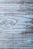 Vertikal sikt för Longstanding naturlig träbakgrund arkivfoton