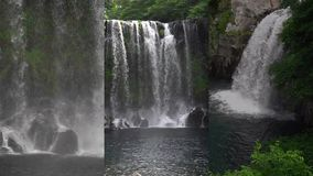 1 3 Vertikal video för sociala massmediaapplikationer på mobila enheter Cheonjeyeon vattenfall på den Jeju ön som är södra stock video