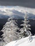 vertikal vinter för 2 liggande royaltyfri fotografi