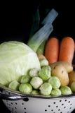 vertikal vinter för holländska grönsaker arkivbilder