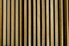 Vertikala guld- ekpaneler i väggcladding Royaltyfri Bild