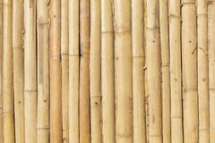 Vertikala linjer bakgrund för bambu Royaltyfri Fotografi