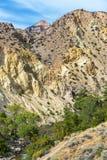 Vertikala Shell Canyon View arkivbilder