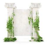 Vertikale Altertumsanschlagtafel abgedeckt mit Efeu Stockbilder