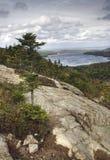 Vertikale Ansicht vom Blasen-Felsen im Acadia, Maine Lizenzfreie Stockfotografie