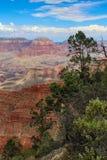 Vertikale Ansicht von Grand Canyon -Südkante gestaltet auf einer Seite durch Bäume stockbild