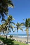 Vertikale Ansicht von Mancora-Strand in Peru Lizenzfreies Stockfoto