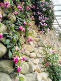 Vertikale Art, die auf Wand landschaftlich verschönert Lizenzfreies Stockbild