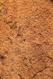 Vertikale Beschaffenheit des roten trockenen Lehms Stockfotografie