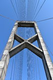 Vertikale Brücke Lizenzfreie Stockfotos
