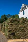Vertikale Nahaufnahme des Rasens mit Haus Stockfoto