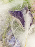 Vertikale perlt violett und Grün gefrorene Abstraktion Stockbild