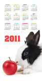 Vertikaler Farbenkalender für 2011 Jahr Stockbilder