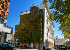 Vertikaler Garten auf dem Gebäude auf Agmashenebeli-Allee in Tiflis georgia lizenzfreie stockfotos