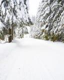 Vertikaler Hintergrund des Winters stockbilder