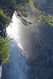 Vertikaler Nahaufnahmewasserfall im Glacier Nationalpark Lizenzfreies Stockfoto