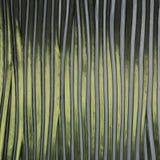 Vertikales gekopiertes Glas des grünen und weißen Streifens Stockbilder