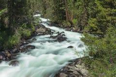 Vertikales Panorama von 3 HDR Bildern Schnelles Flusswasser Russland Altai lizenzfreie stockfotografie