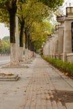 Vertikalt baner för låg vinkel, lång trottoar Arkivbild