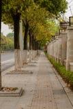 Vertikalt baner, lång trottoar Fotografering för Bildbyråer